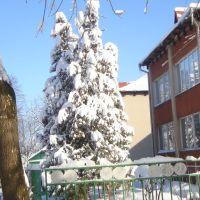 Детский сад, Рожнятов