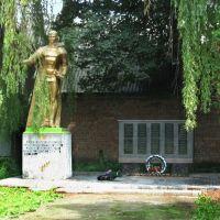 ►Памятник загиблим у II світовій війні, Снятын