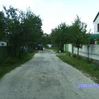 baryshivka 2008, Барышевка