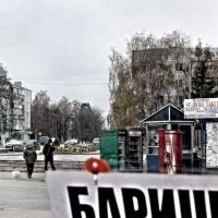 А/H1N1~november09, Барышевка