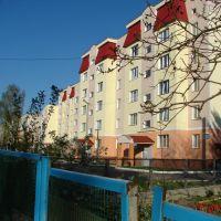 дом на ул. Октябрьская, Барышевка