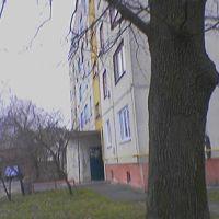 Дома на Ленина, Барышевка