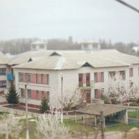 Баришівка, Теремок, Барышевка