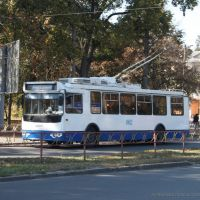 Trolleybus, Белая Церковь