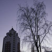 фиолетовый закат, Белая Церковь