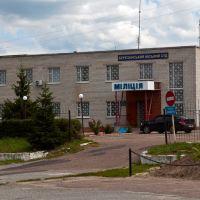 Березанский городской суд и милиция, Березань