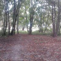 Парк Ветеранов, Березань