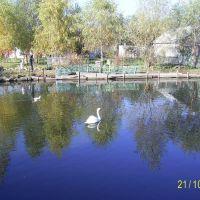 Borispol park, Борисполь