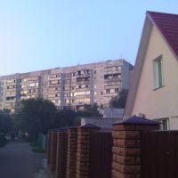 Hollywood, Борисполь