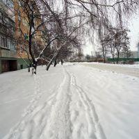 Chervonoarmiyska Street (Winter) 1, Борисполь