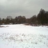 Зимний гай, Боровая