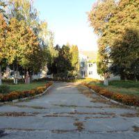 Київська дослідна станція, Боровая