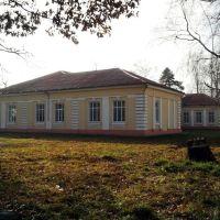земская школа (1915), Боровая