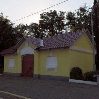 одно из двух уцелевших зданий станции Мотовиловка (1870), Боровая