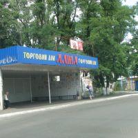 "Остановка ""Алина"", Бородянка"