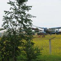 Аэродром1, Бородянка