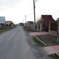ул. Игнатова в пгт. Бородянка Киевской обл., Бородянка