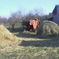 ферма в пгт.Бородянка весной 2012, Бородянка