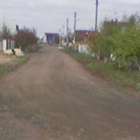 Бородянка, окончание улицы Игнатова, Бородянка