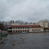 Brovary Brewery, Бровары
