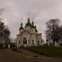 Прекрасный храм в Василькове, Васильков