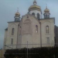Новая церковь, Васильков