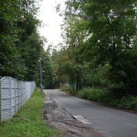 Ворзель, 09.2009, Ворзель