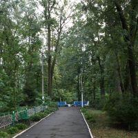 Ворзель, панс Победа, 09.2009, Ворзель