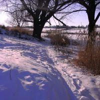 Зима..., Гребенки