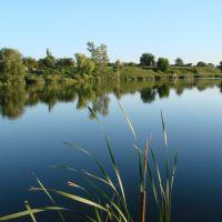 На річці, Гребенки