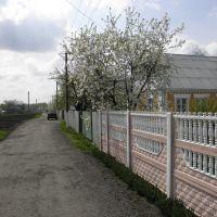 ул. Ватутина, Гребенки