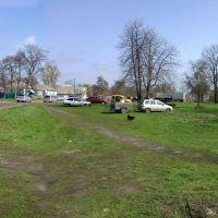beyond the market, Згуровка