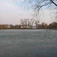 ставок у березні * pond in March, Згуровка