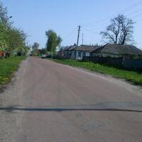 Mayakovskogo St., Згуровка