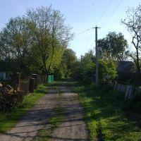 lane, Згуровка