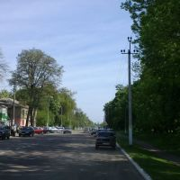 Ukrainska St., Згуровка