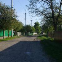 Gorkogo St., Згуровка