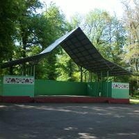 Scene in the park, Згуровка