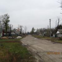 с. Иванков, ул. Ленина, Иванков