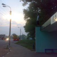 остановка))), Иванков