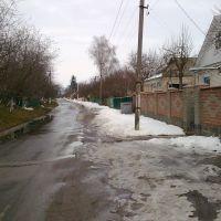 titova street, Кагарлык