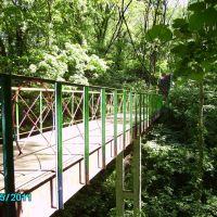 Мост в парке, Кагарлык
