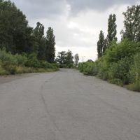 автотраса біля аеродрому чайка, 2014р, Киев