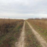 Дорога через поле, Киевская