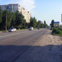 Дорога на Вишневе, Киевская