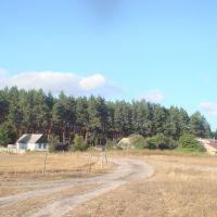 Вид на ул. Чапаева, Кодра
