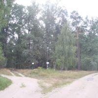 Развилка  проулка и улицы Ворошилова, Кодра