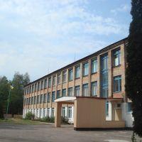 Школа, Кодра