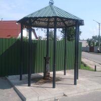 Козин, Киевская область, Украина, Козин