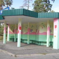 Автобусная остановка. с. Козин., Козин